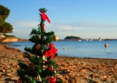 FEATURE | 6 reasons to love Christmas (and new year) in Ibiza