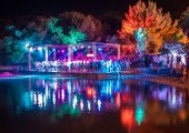 The Garden Festival + Electric Elephant 2014